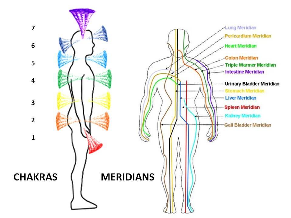 Chakras & Meridians